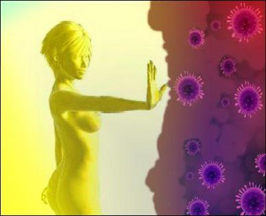 Дисплазия шейки матки и иммунитет